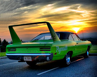 Superbird Sunset
